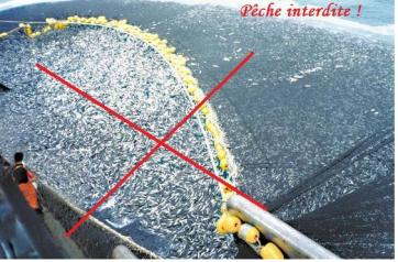 Pêche interdite.